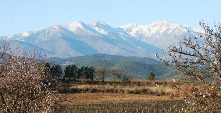 Location de vacances Languedoc-Roussillon - Le Canigou